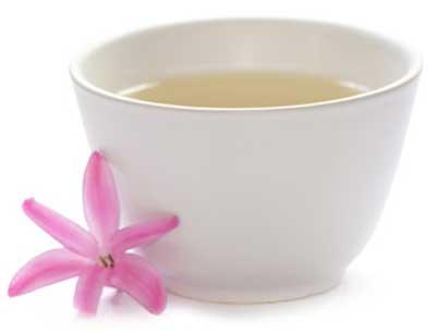 chá branco para perder peso
