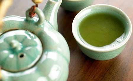Chá de Espinheira Santa