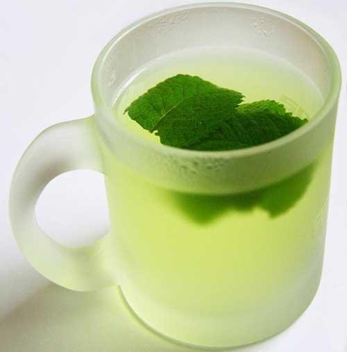 Chá de Eucalipto