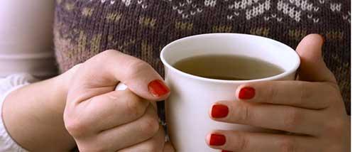 Resultado de imagem para chá de angélica